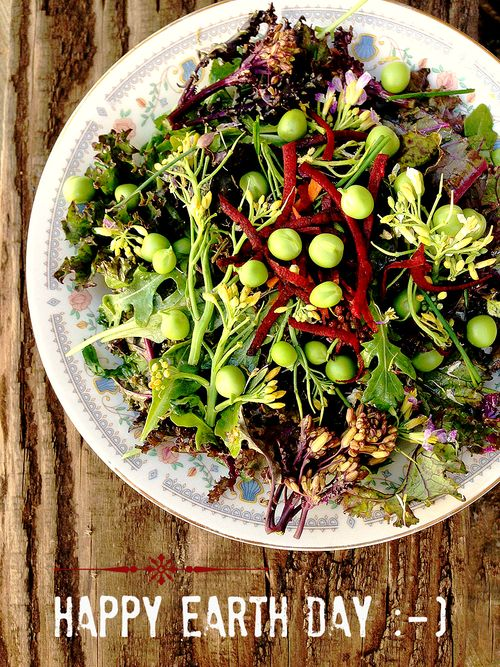 Earth Day Kale Salad