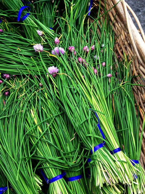 Farmers Market Flowering Chives Basket