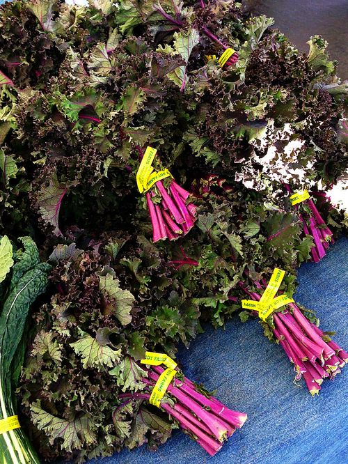 Farmers market purple kale