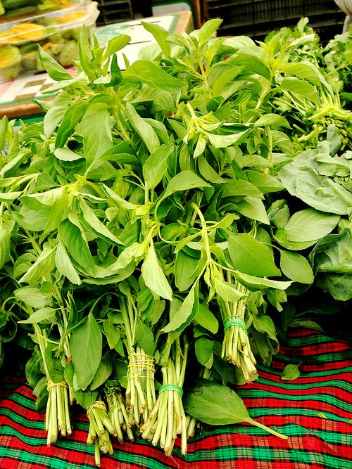 Farmersmarket Lemon Basil