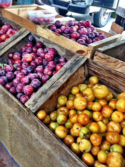 Farmers-Market-Plums