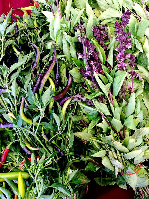 Farmers Market Purple Basil Peppers