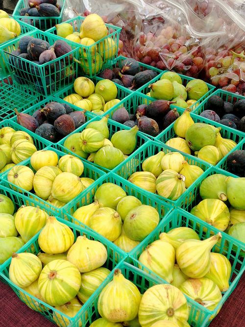 Farmers Market Adriatic Candy Cane Figs